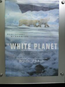 ホワイトプラネット.JPG
