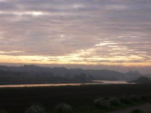朝靄の丸子橋付近