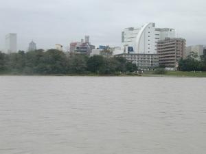 台風の多摩川